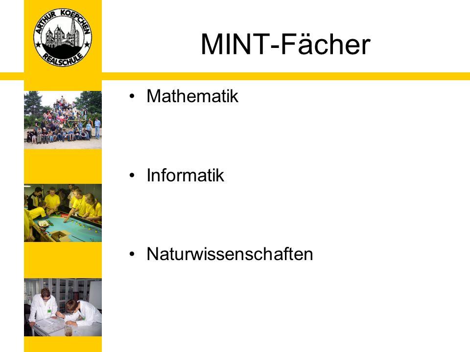 MINT-Fächer Mathematik Informatik Naturwissenschaften
