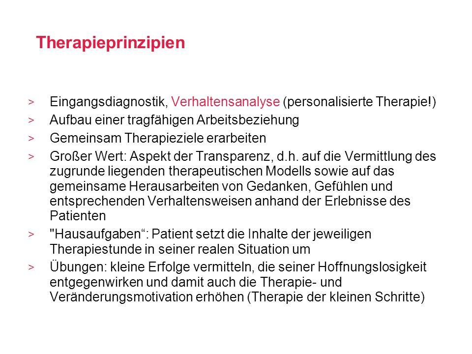 Therapieprinzipien Eingangsdiagnostik, Verhaltensanalyse (personalisierte Therapie!) Aufbau einer tragfähigen Arbeitsbeziehung.