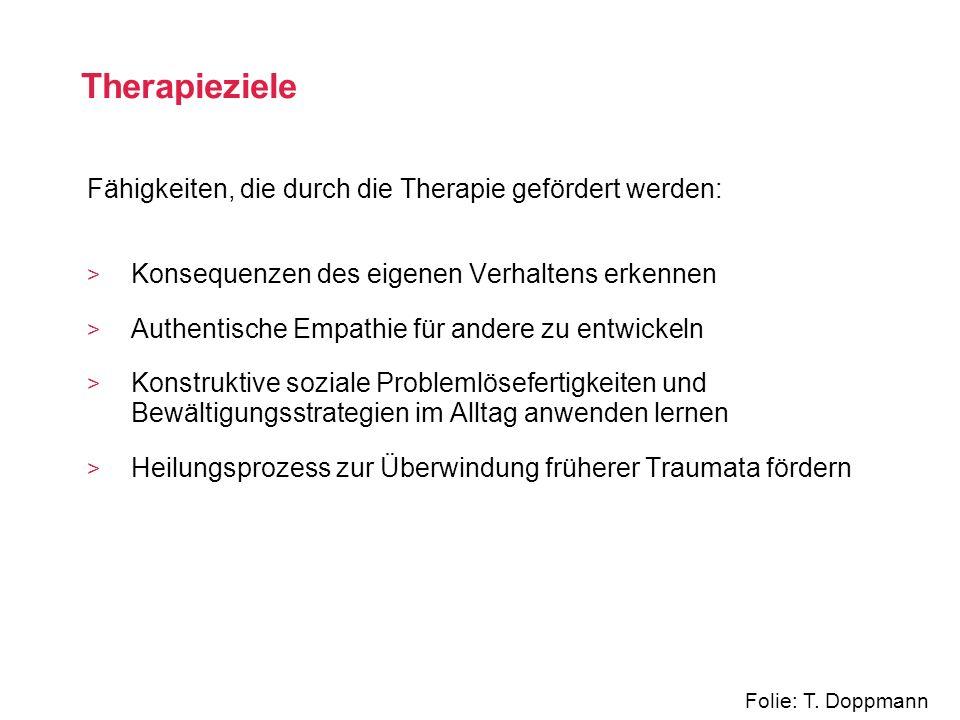 Therapieziele Fähigkeiten, die durch die Therapie gefördert werden: