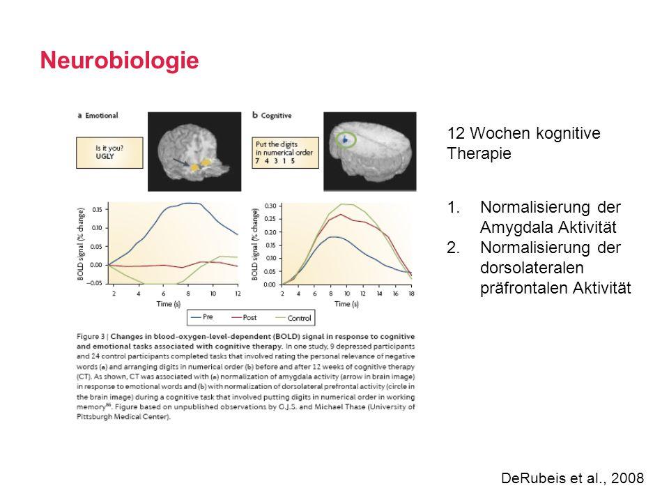 Neurobiologie 12 Wochen kognitive Therapie