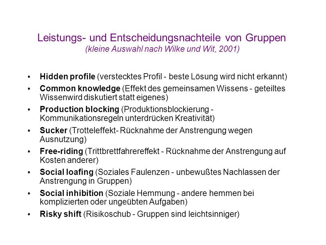 Leistungs- und Entscheidungsnachteile von Gruppen (kleine Auswahl nach Wilke und Wit, 2001)