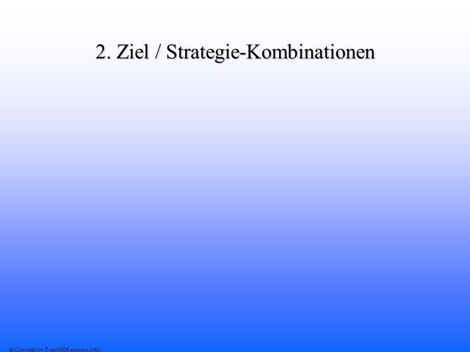 2. Ziel / Strategie-Kombinationen