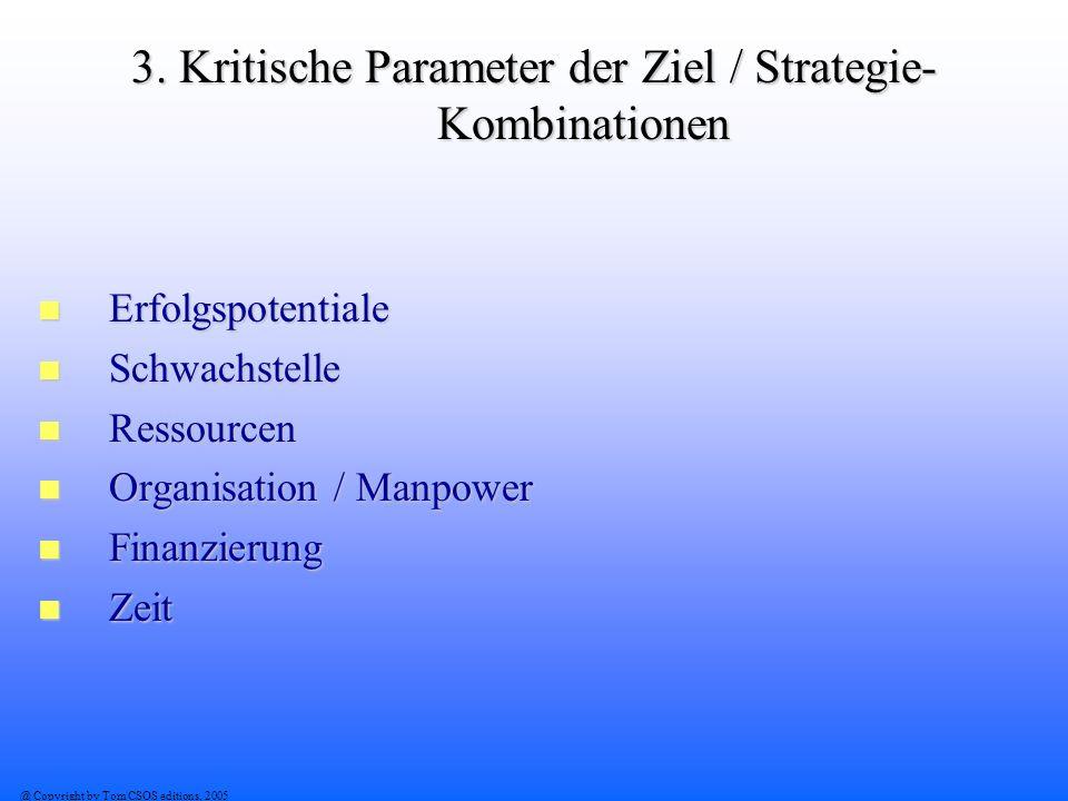 3. Kritische Parameter der Ziel / Strategie-Kombinationen