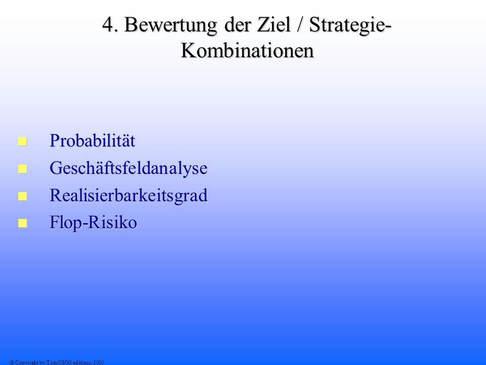 4. Bewertung der Ziel / Strategie-Kombinationen