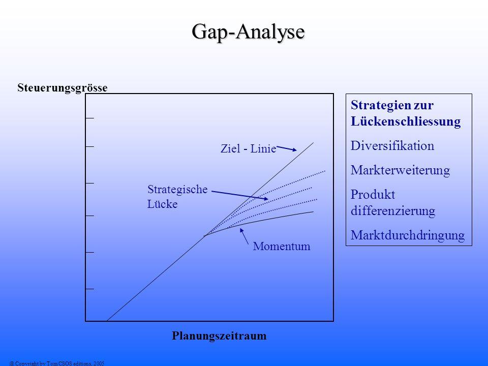Gap-Analyse Strategien zur Lückenschliessung Diversifikation
