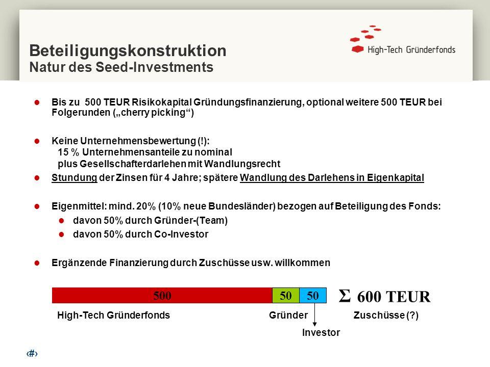 Beteiligungskonstruktion Natur des Seed-Investments