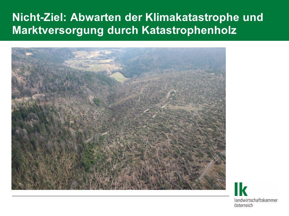 Nicht-Ziel: Abwarten der Klimakatastrophe und Marktversorgung durch Katastrophenholz