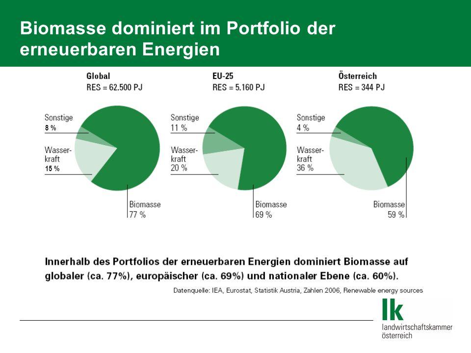 Biomasse dominiert im Portfolio der erneuerbaren Energien