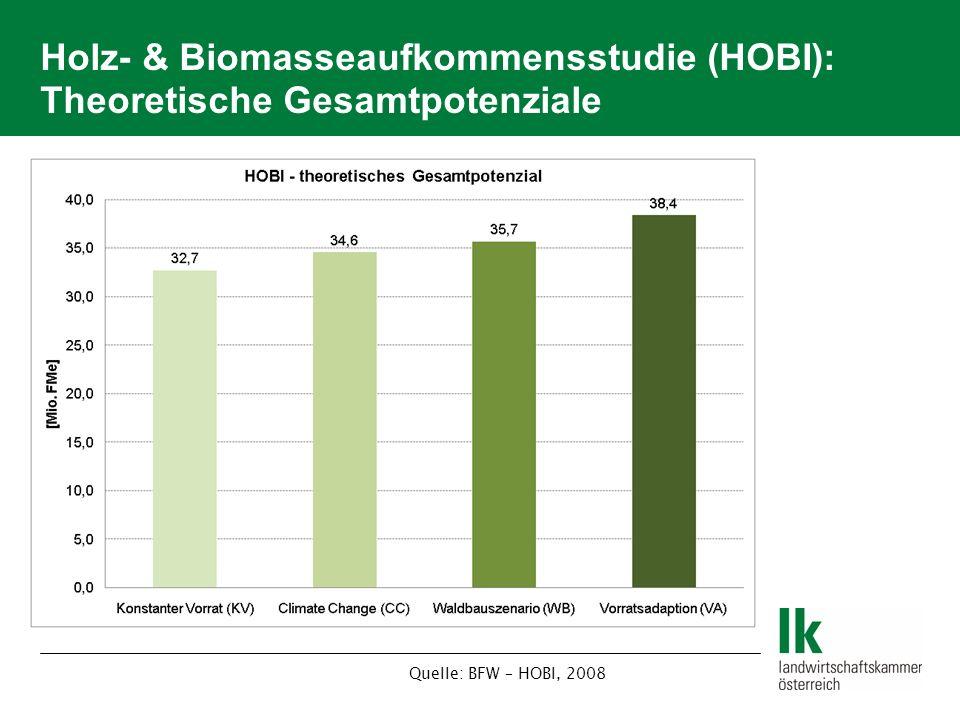 Holz- & Biomasseaufkommensstudie (HOBI): Theoretische Gesamtpotenziale