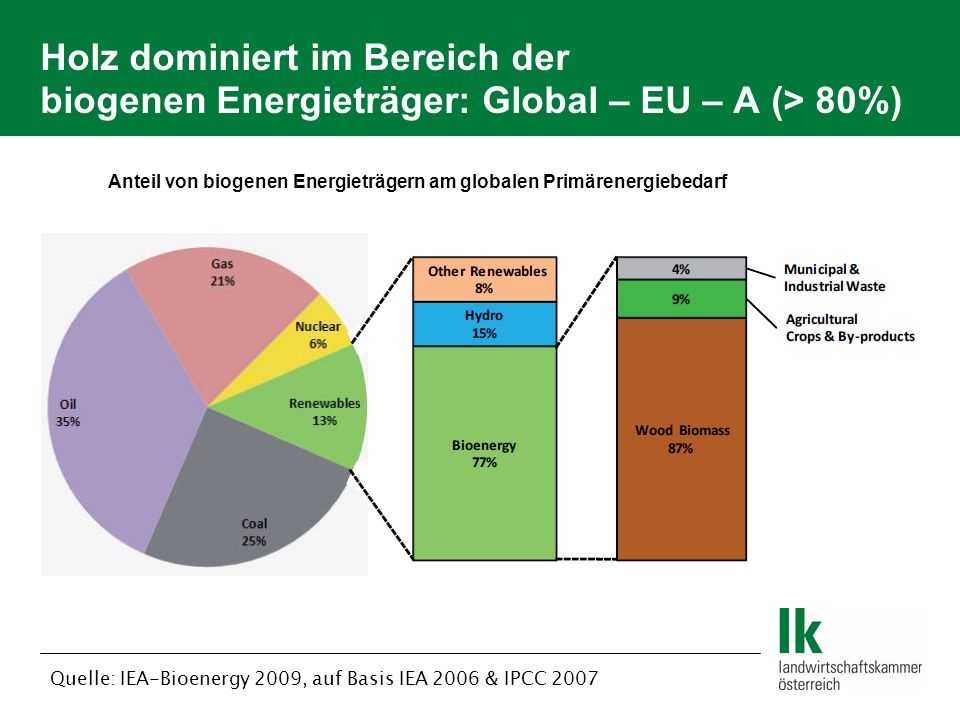 Anteil von biogenen Energieträgern am globalen Primärenergiebedarf