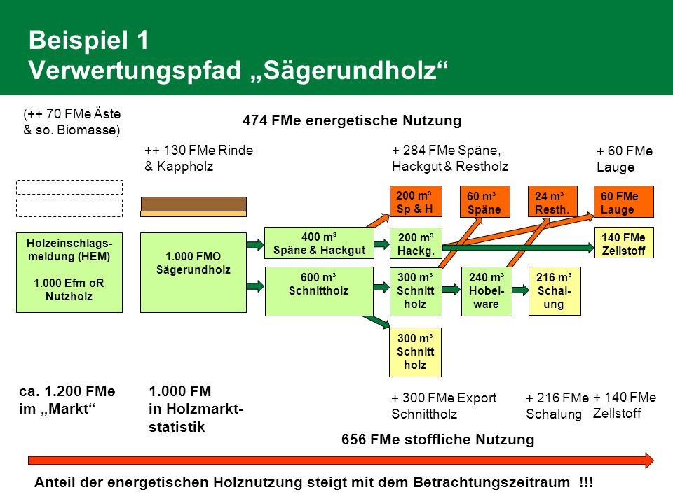 """Beispiel 1 Verwertungspfad """"Sägerundholz"""