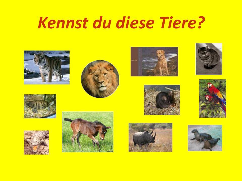 Kennst du diese Tiere