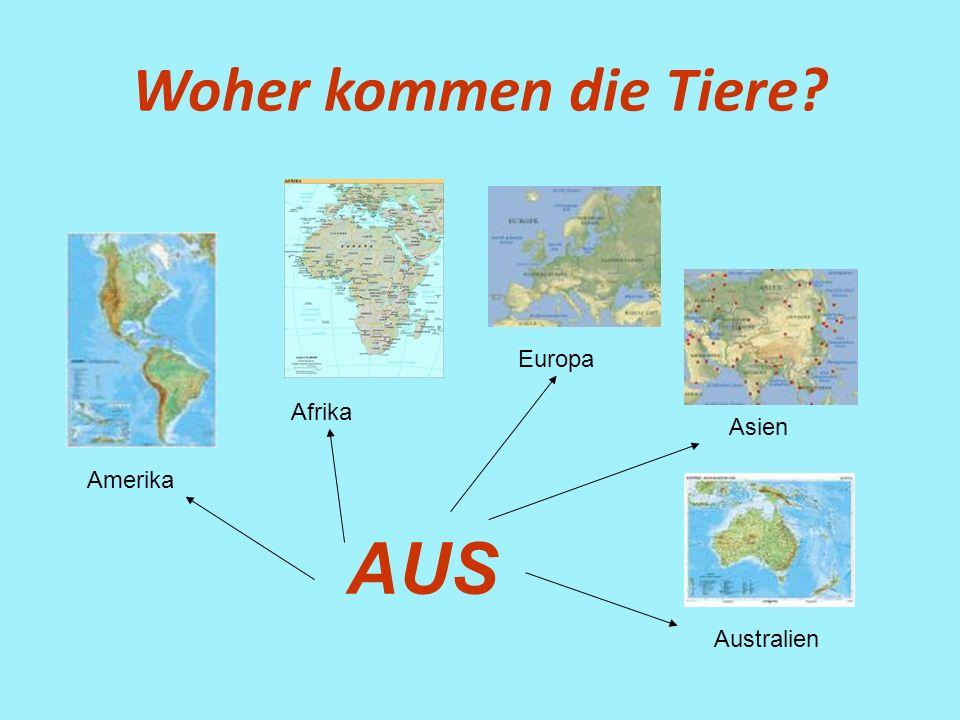 Woher kommen die Tiere Europa Afrika Asien Amerika AUS Australien