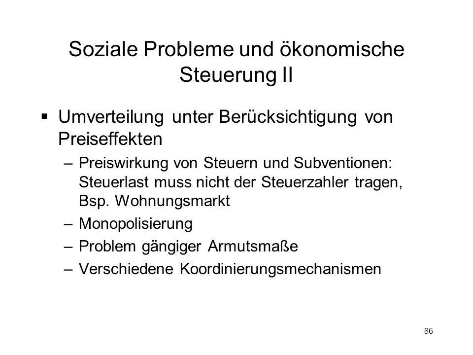 Soziale Probleme und ökonomische Steuerung II