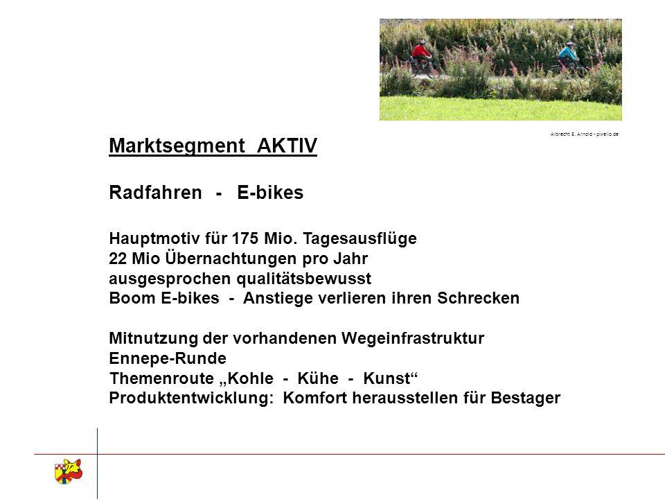 Marktsegment AKTIV Radfahren - E-bikes