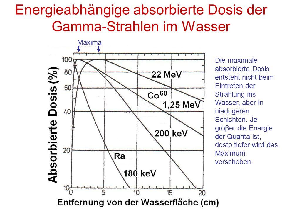 Energieabhängige absorbierte Dosis der Gamma-Strahlen im Wasser