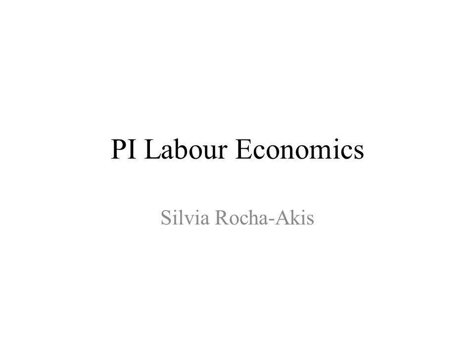 PI Labour Economics Silvia Rocha-Akis