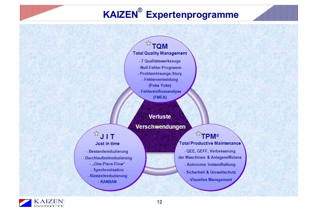 KAIZEN® Expertenprogramme