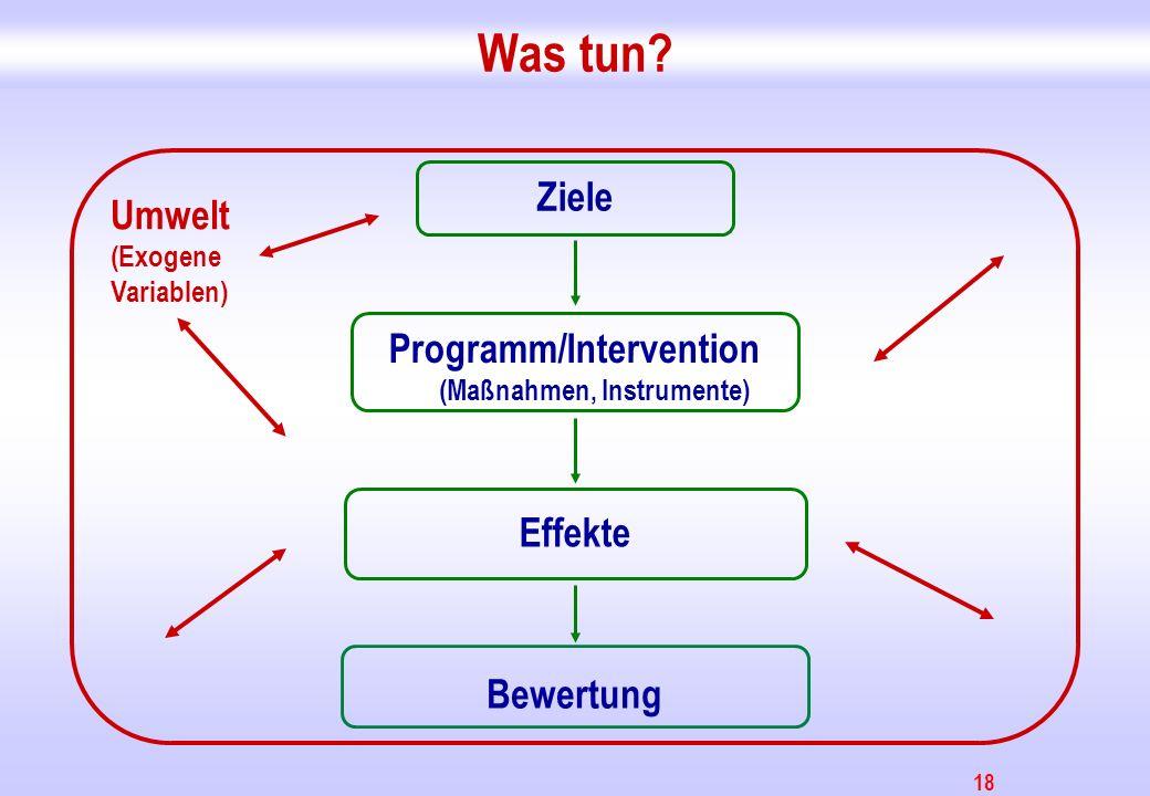 Programm/Intervention (Maßnahmen, Instrumente)