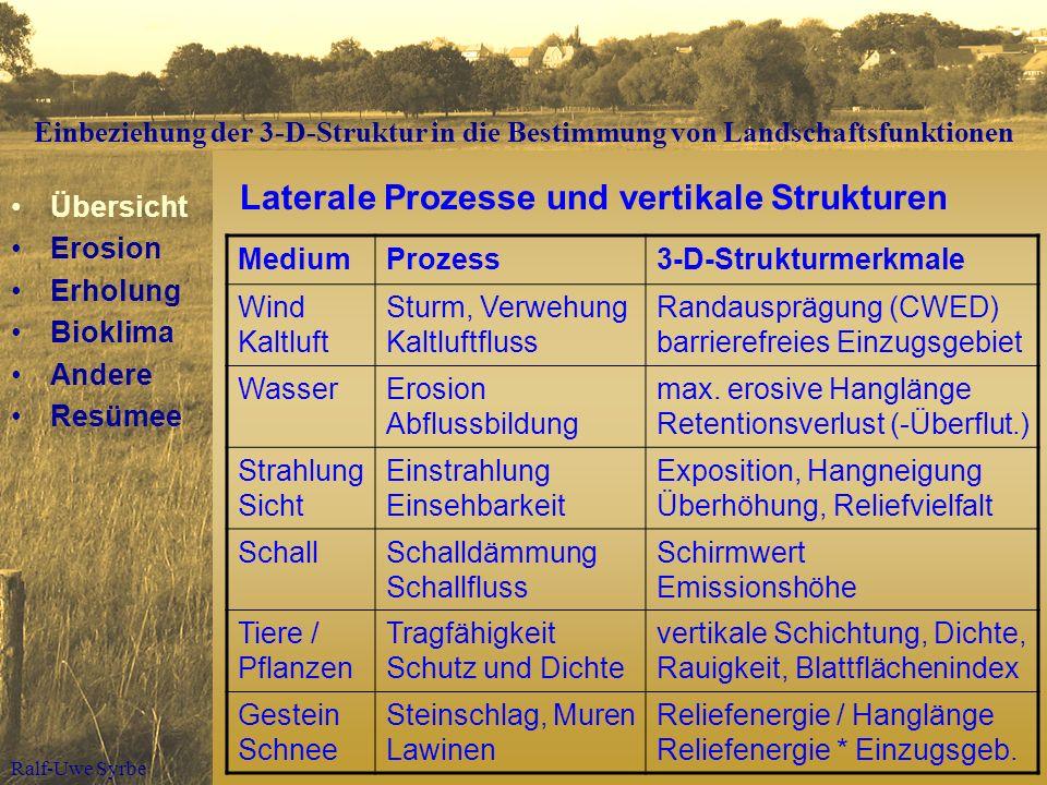 Laterale Prozesse und vertikale Strukturen
