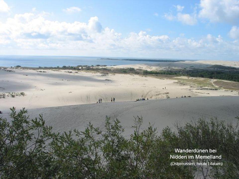 Wanderdünen bei Nidden im Memelland (Ostpreussen, heute Litauen)