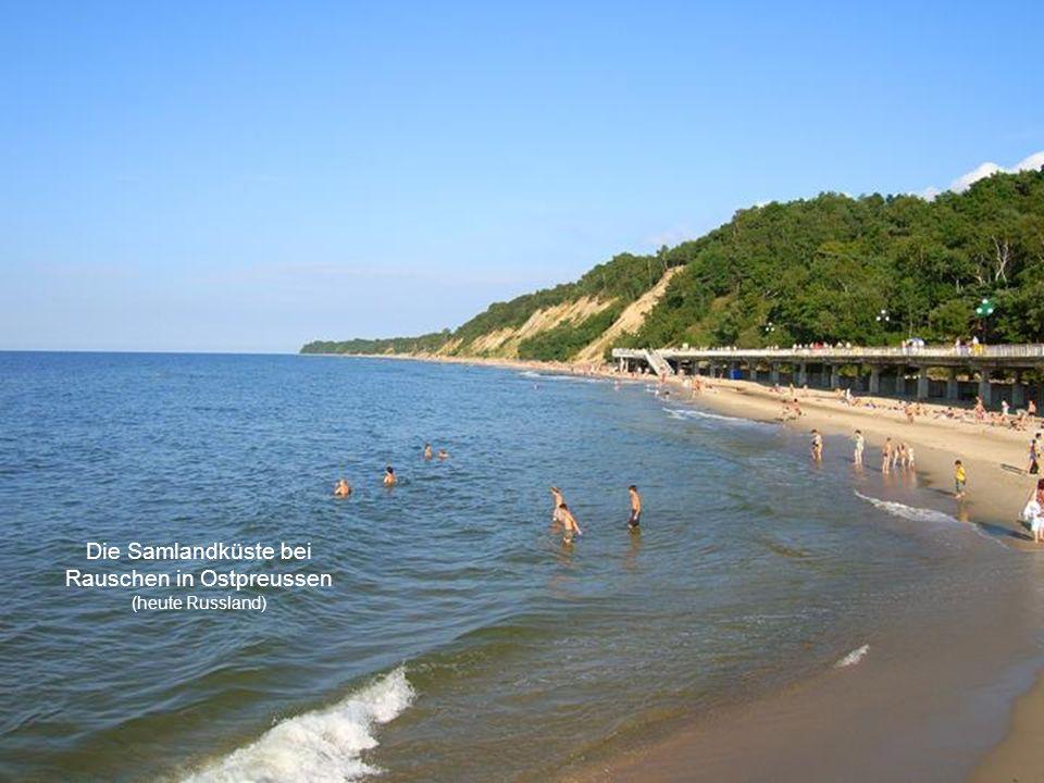 Die Samlandküste bei Rauschen in Ostpreussen (heute Russland)