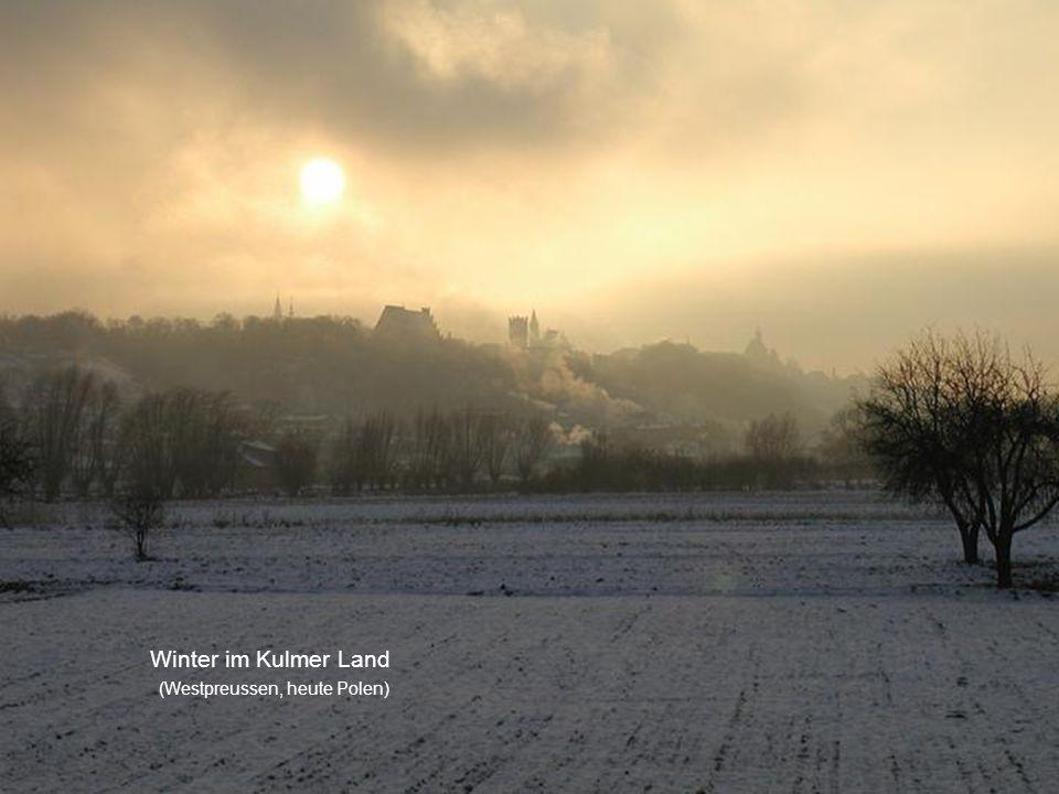 Winter im Kulmer Land (Westpreussen, heute Polen)
