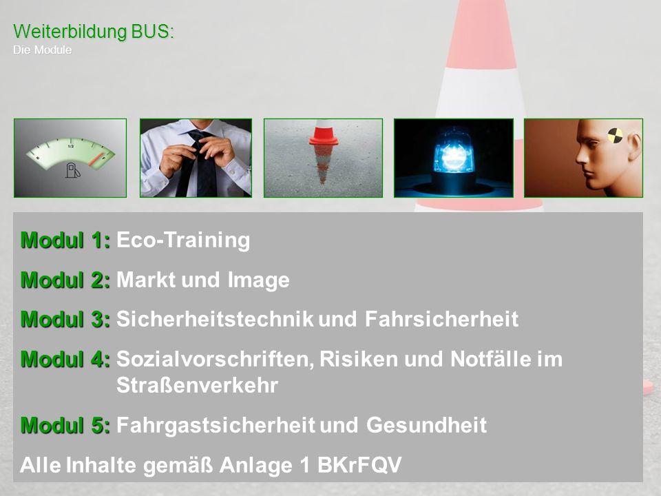 Weiterbildung BUS: Die Module