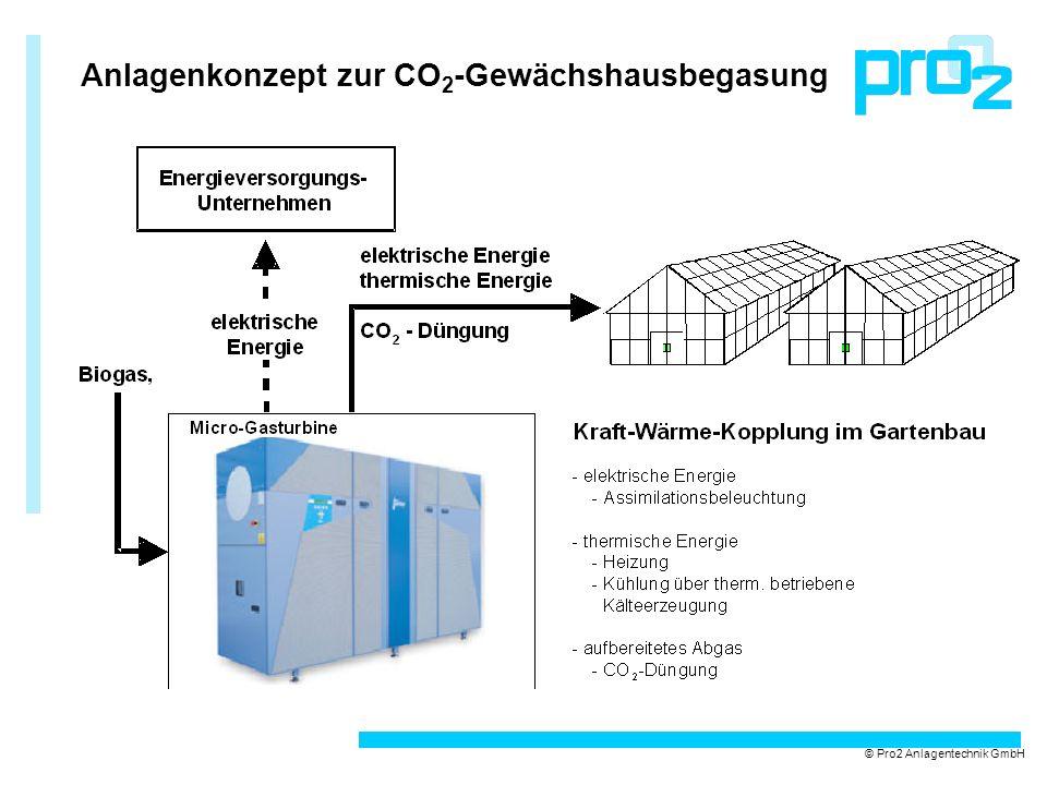 Anlagenkonzept zur CO2-Gewächshausbegasung