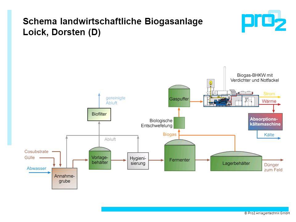 Schema landwirtschaftliche Biogasanlage Loick, Dorsten (D)