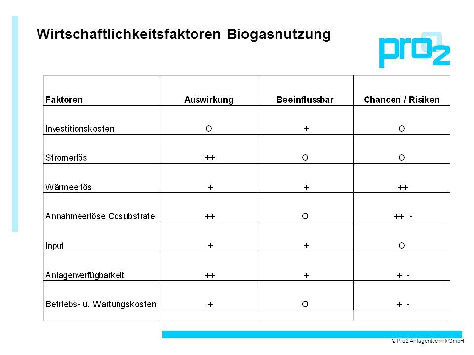 Wirtschaftlichkeitsfaktoren Biogasnutzung