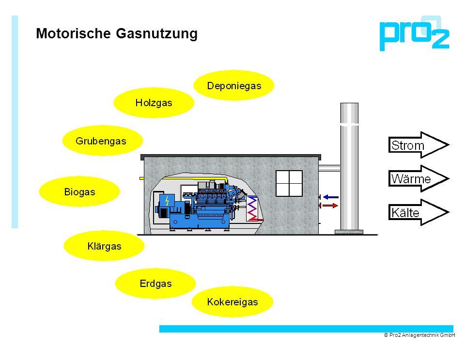 Motorische Gasnutzung