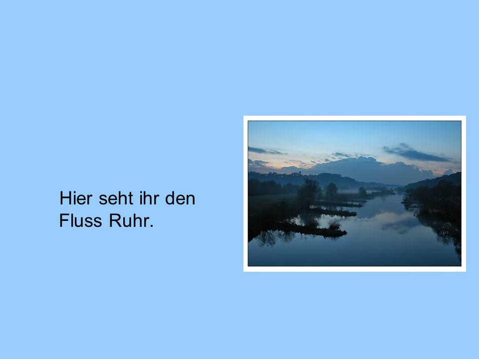 Hier seht ihr den Fluss Ruhr.