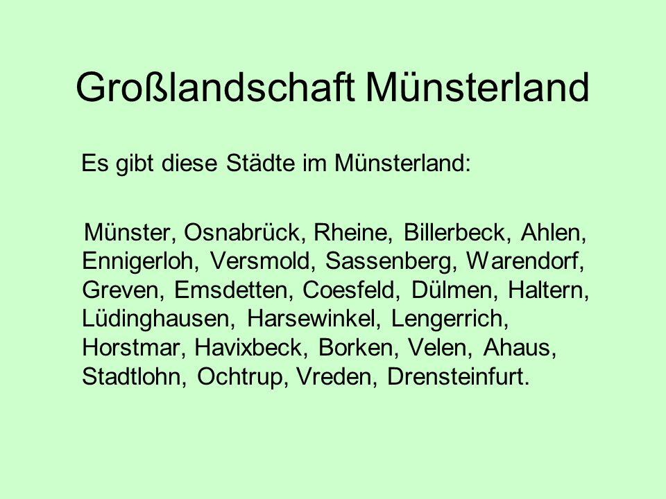 Großlandschaft Münsterland