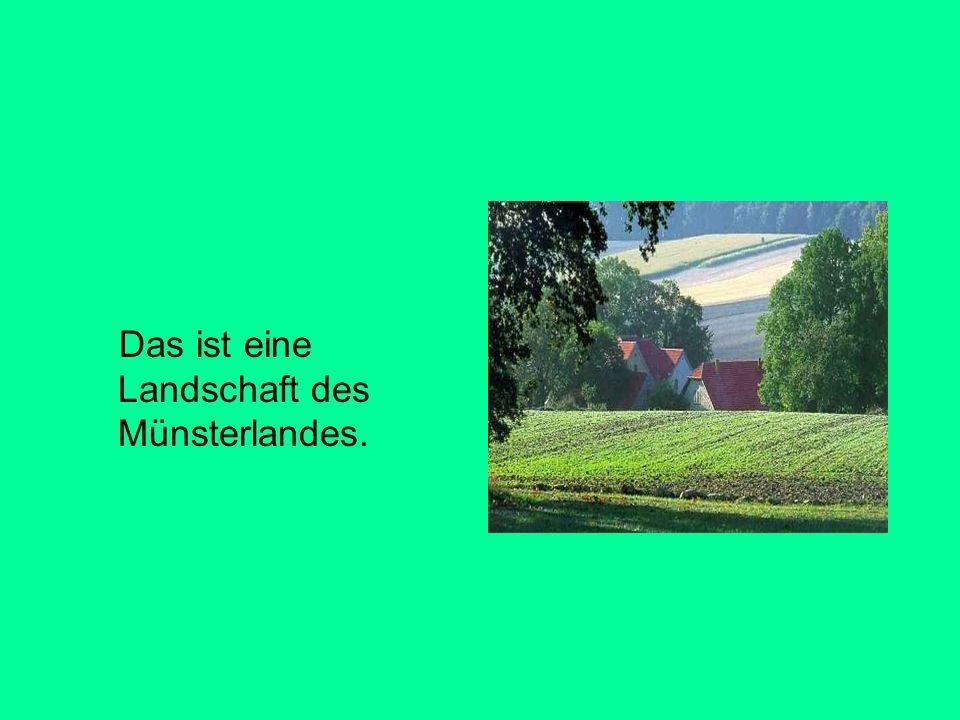 Das ist eine Landschaft des Münsterlandes.