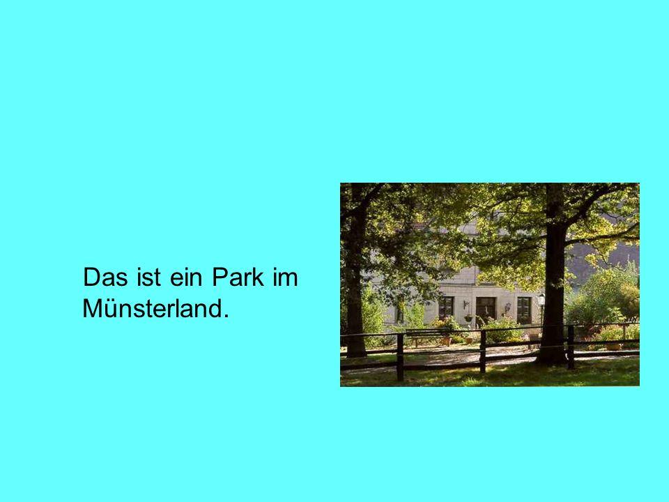 Das ist ein Park im Münsterland.