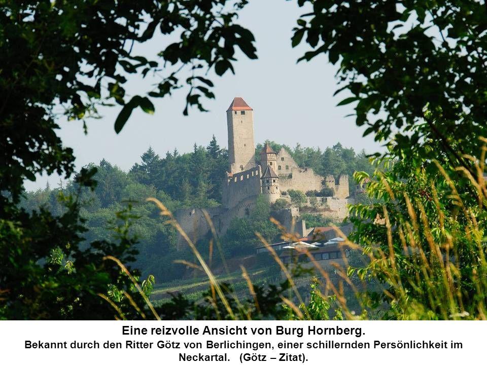 Eine reizvolle Ansicht von Burg Hornberg.