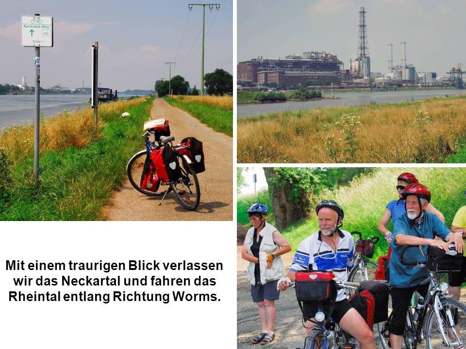 Mit einem traurigen Blick verlassen wir das Neckartal und fahren das Rheintal entlang Richtung Worms.