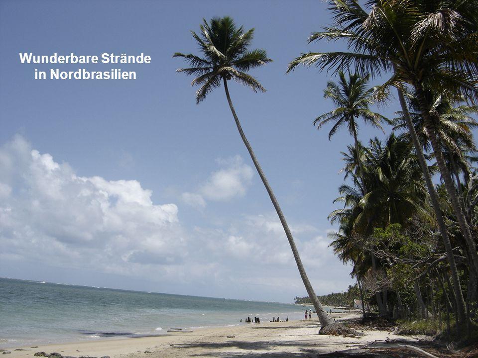 Wunderbare Strände in Nordbrasilien