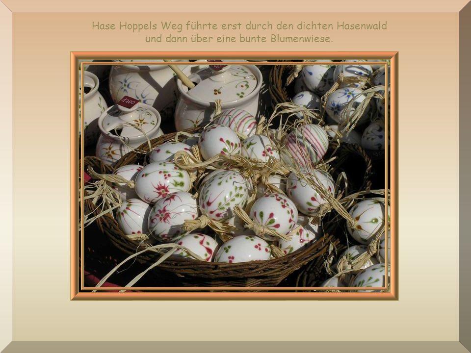 Hase Hoppels Weg führte erst durch den dichten Hasenwald und dann über eine bunte Blumenwiese.