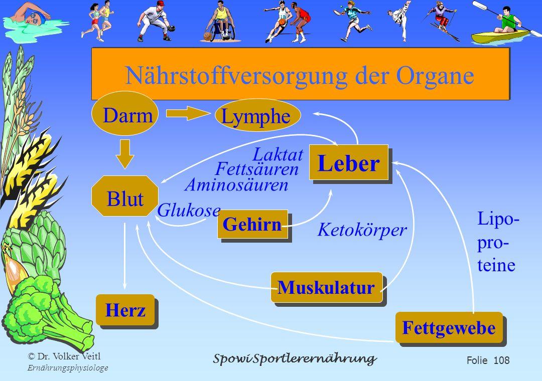 Nährstoffversorgung der Organe
