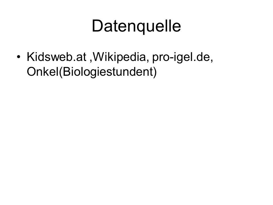 Datenquelle Kidsweb.at ,Wikipedia, pro-igel.de, Onkel(Biologiestundent)