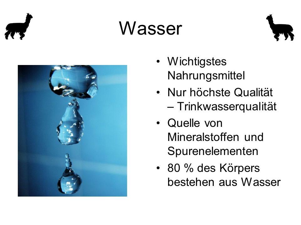 Wasser Wichtigstes Nahrungsmittel