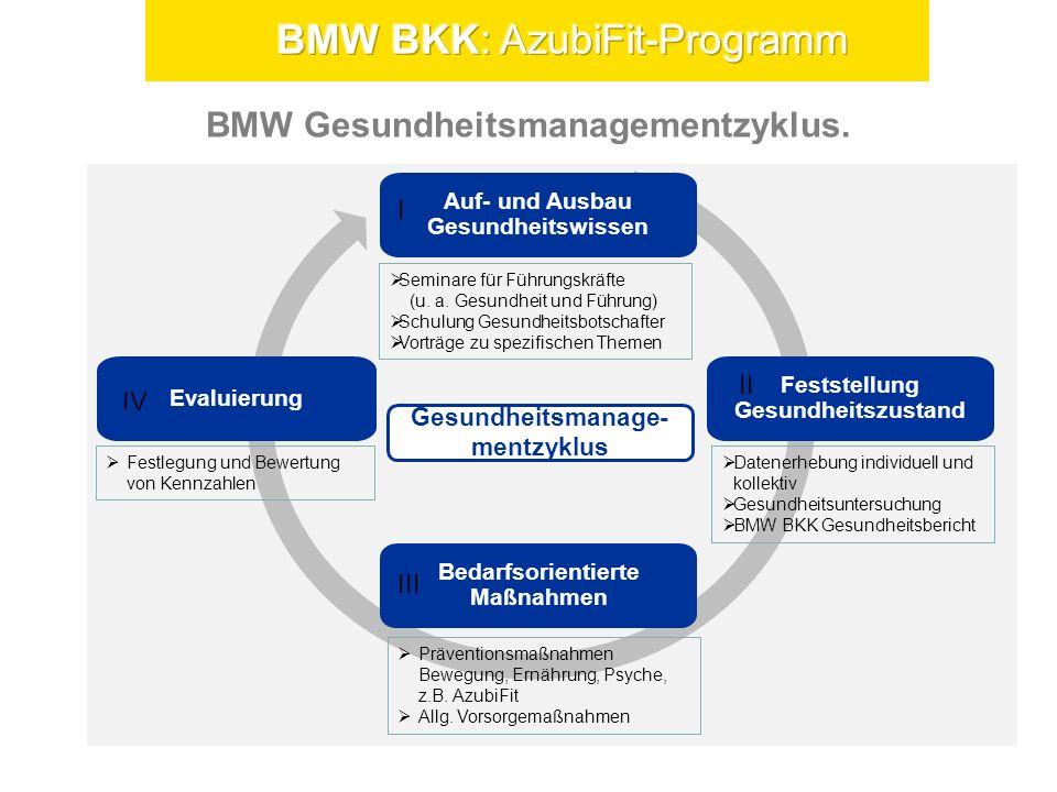 BMW Gesundheitsmanagementzyklus.