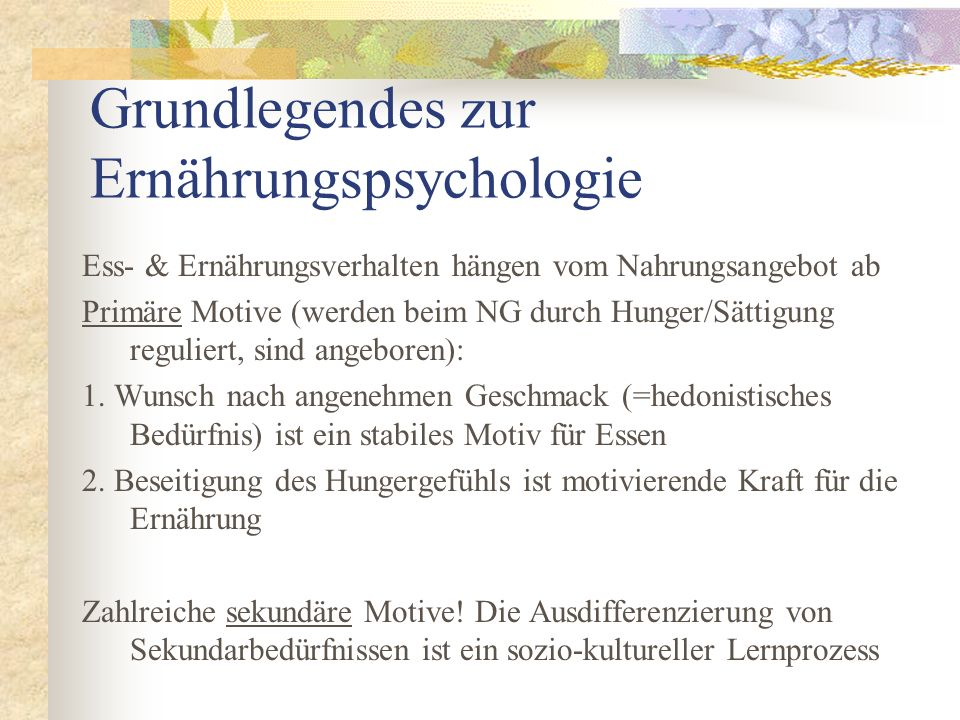 Grundlegendes zur Ernährungspsychologie