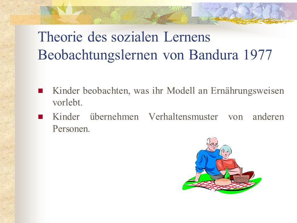 Theorie des sozialen Lernens Beobachtungslernen von Bandura 1977