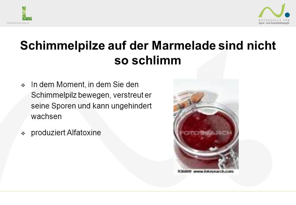 Schimmelpilze auf der Marmelade sind nicht so schlimm