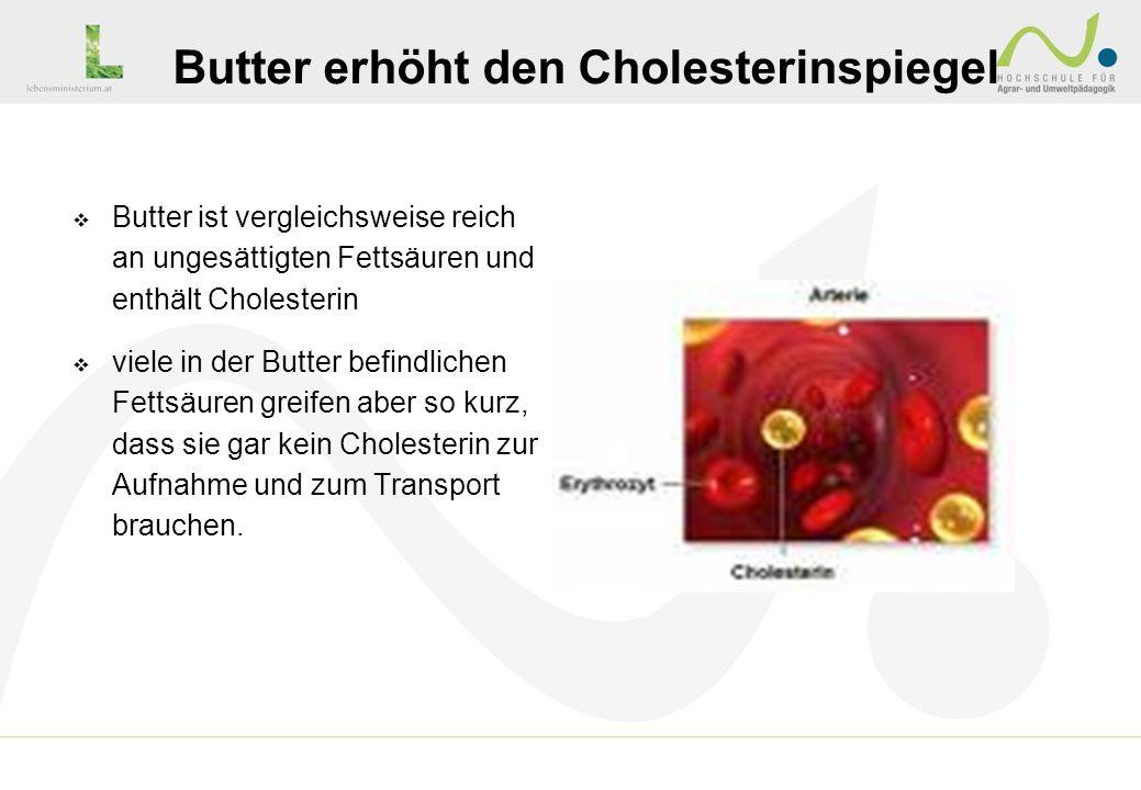 Butter erhöht den Cholesterinspiegel