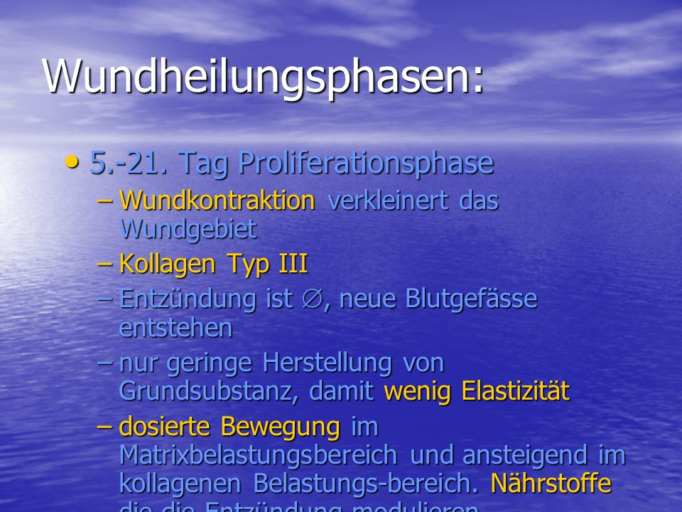 Wundheilungsphasen: 5.-21. Tag Proliferationsphase