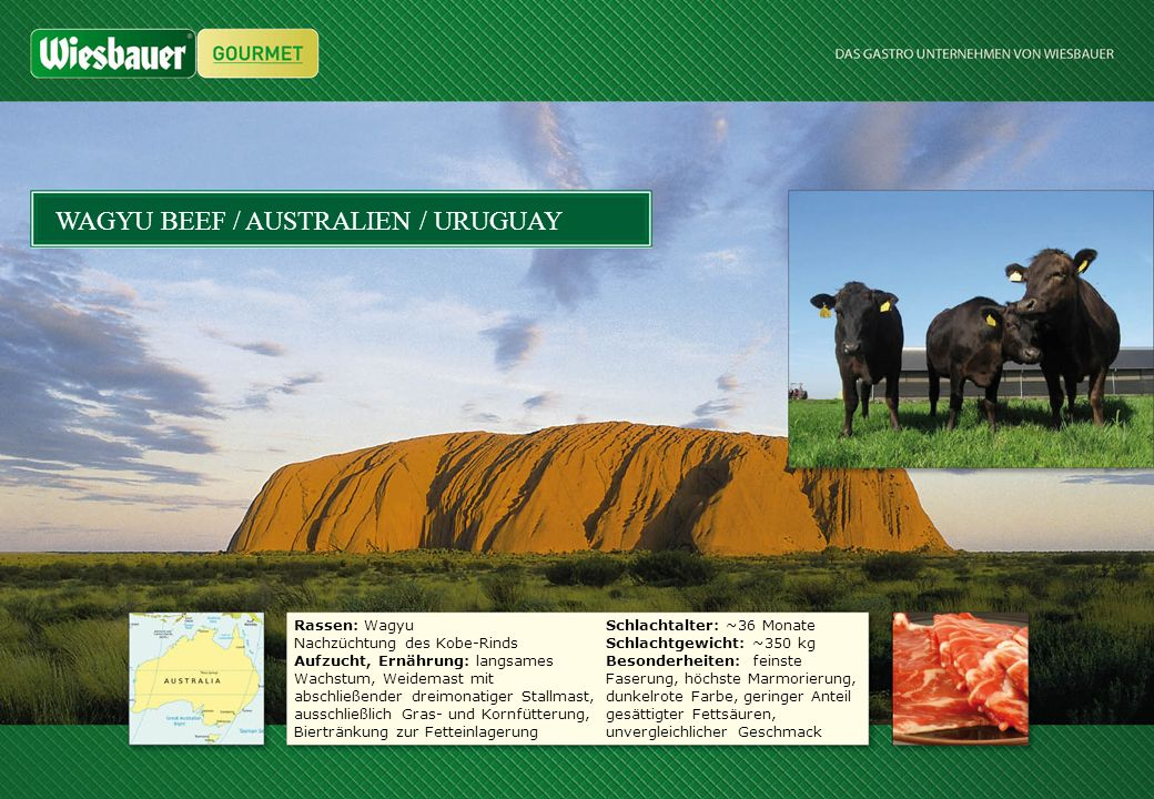 WAGYU BEEF / AUSTRALIEN / URUGUAY